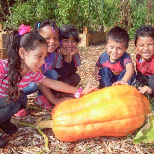 North Marietta Neighborhood Community Garden Kids